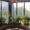 Herschel Hawaii calentador en la zona de estar del restaurante